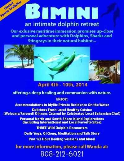 Bimini Dolphin Retreat